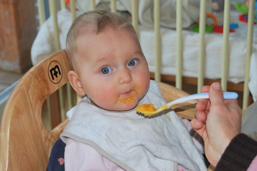 Gesunde Kinderernährung braucht wissenschaftliche Grundlagen